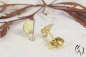Preview: Ohrstecker Sira, Gold 750/- mit Brillant